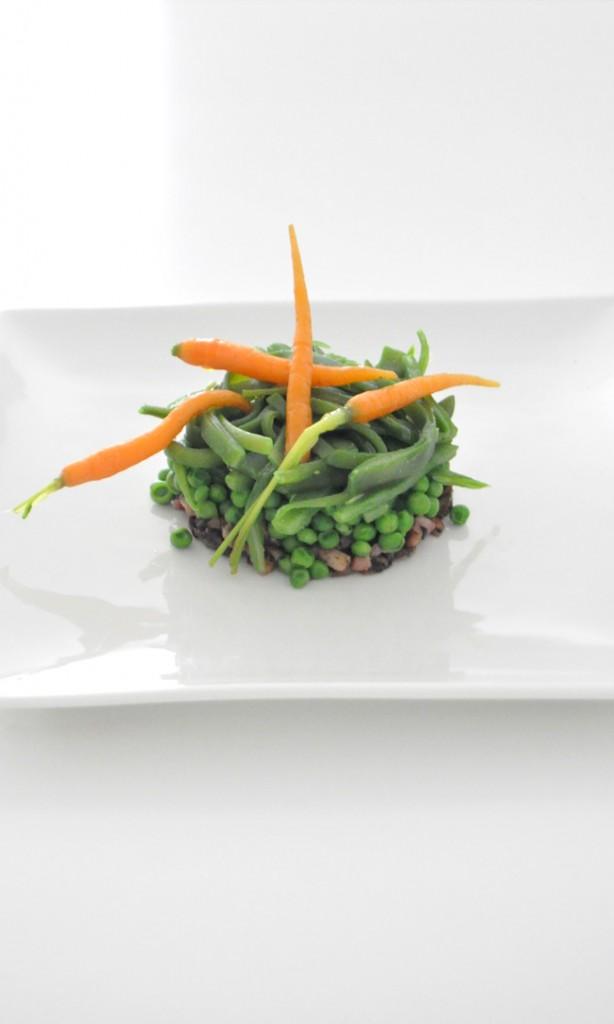 timbal de verduras y zanahorias micro