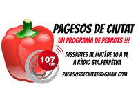 3Pagesos_de_ciutatg