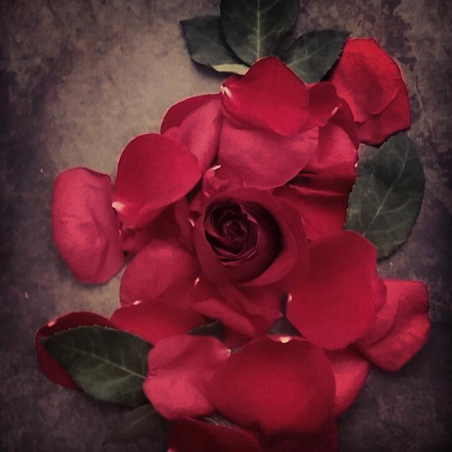 rosa222