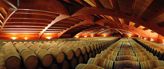 panoramica barrels 650