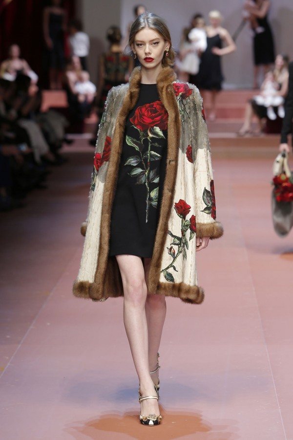 dolce-and-gabbana17
