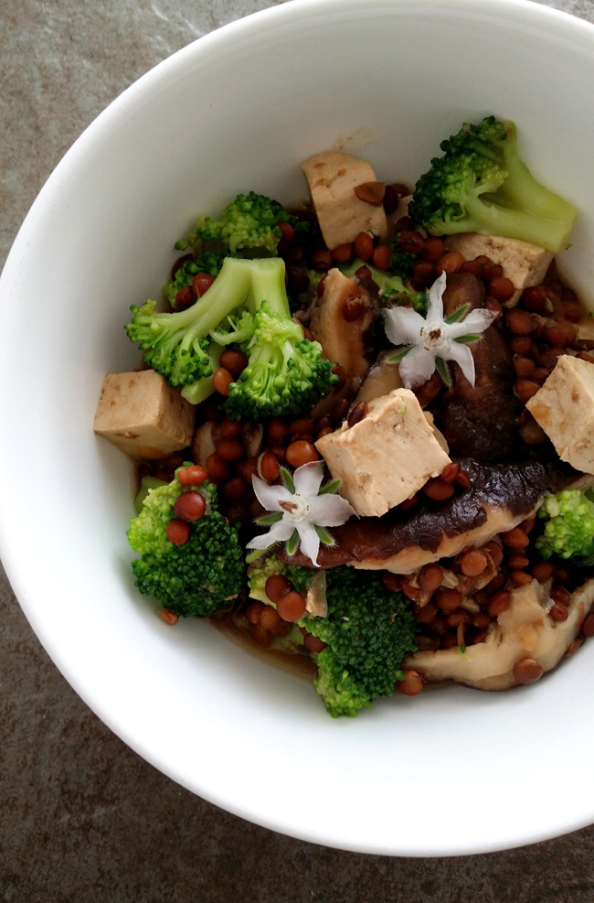 Lentejas con brócoli tofu y shiitake - photo#46